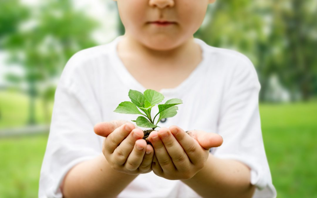 Top 10 Benefits of Environmental Education for Kids